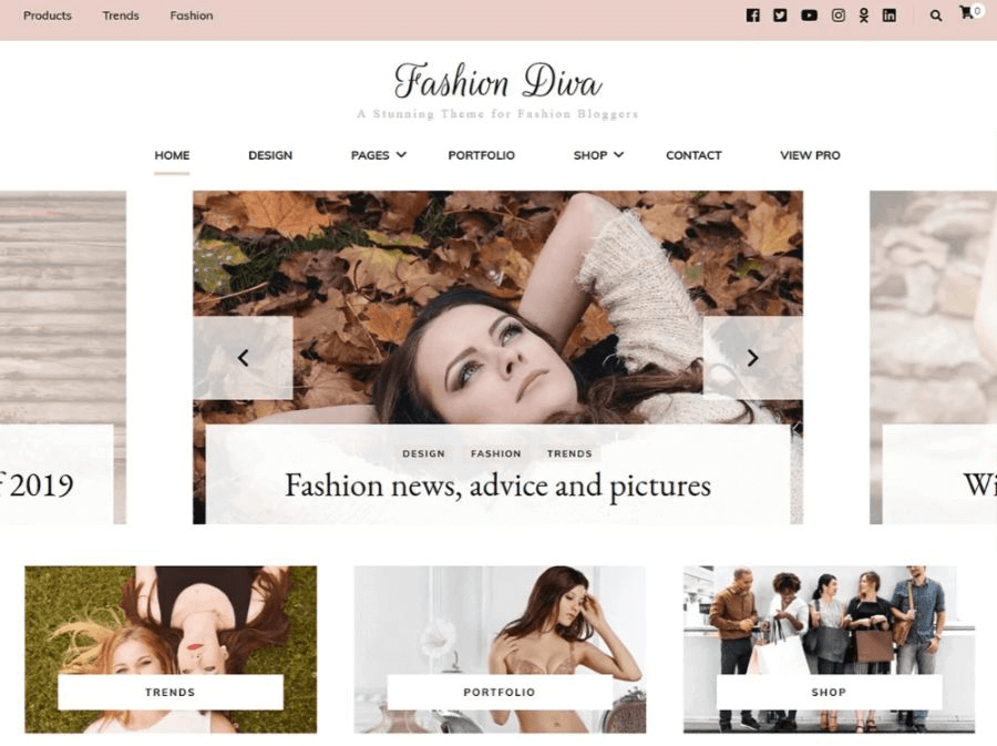 hion diva wordpress woocommerce